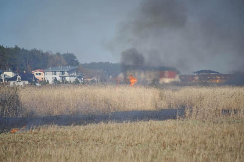 Pożar trawy w Ustce - ustka24.info