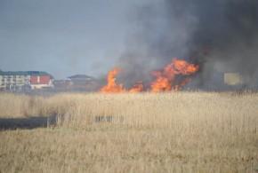 Pożar trawy w Ustce