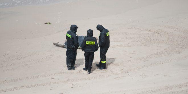 Ciało dziecka znalezione na plaży w Orzechowie