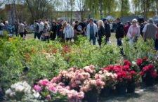 Majowy weekend w Ustce - ustka24.info